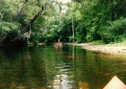 Dom Nozzis Withlacoochee South Voyage - Florida rivers